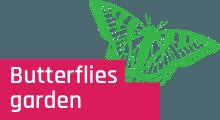 butterfly-but-en